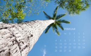 2013 Desktop Kalender Februar